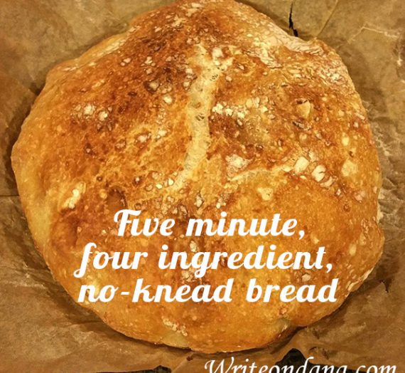 Five minute, four ingredient, no-knead bread for your mouth